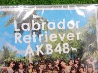AKB48/ラブらドール・レトリバー/劇場版/シングルCD/3枚ばら売り